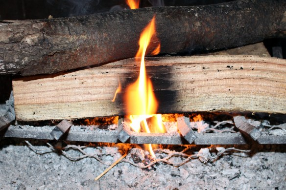 Using an egg carton fire starter