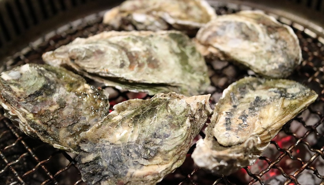 Oysters_1538763711243.jpg