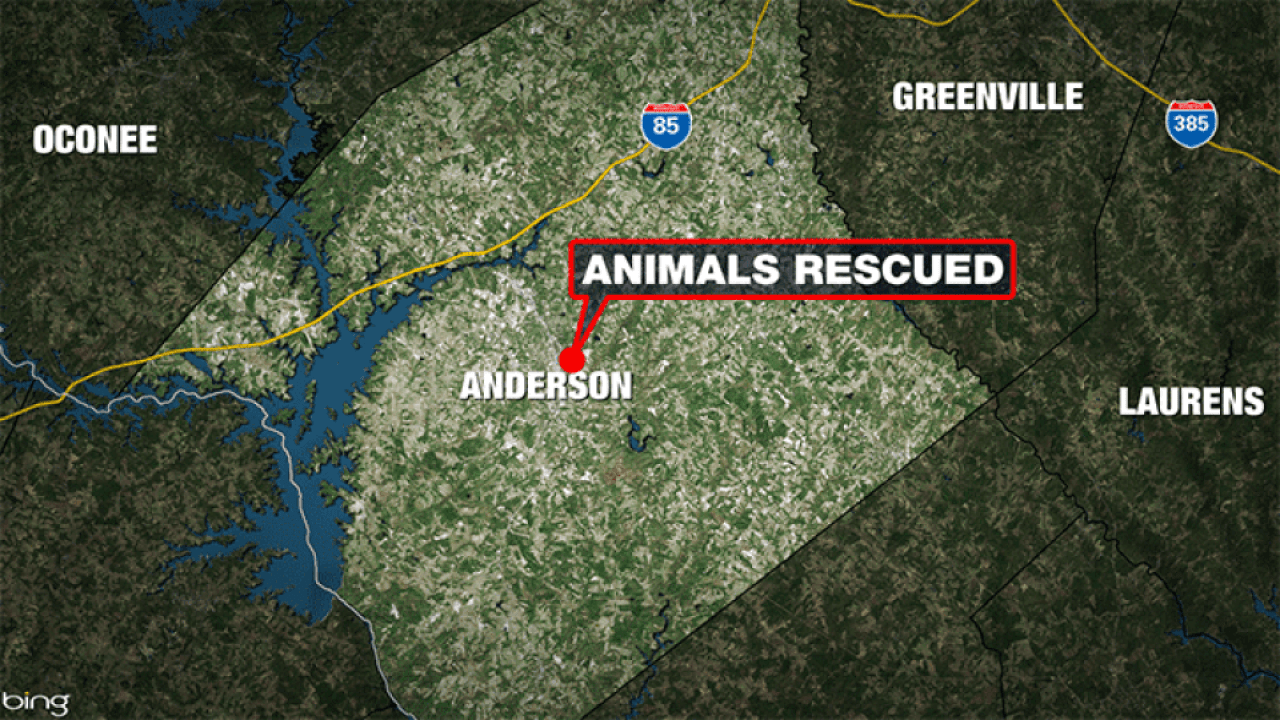 Anderson-Animals-Rescued-MAP-1_1560455886269.png