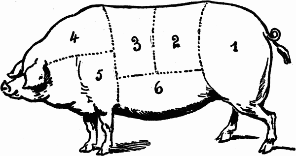 pig food diagram