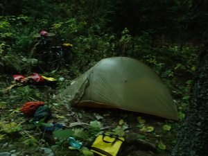 A nice campsite in the woods