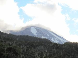 Kili from camp