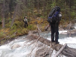 Back in the trees at a tough stream crossing