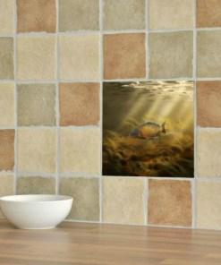 Ceramic Tile (Common Carp)