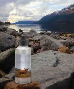 Highland Collection - Aluminium Reusable Environmentally Friendly Water Bottle (Highland Cow) Personalised Gift