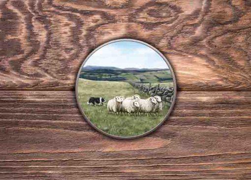 Highland Collection - Round Tin (Sheep & Sheepdog) Personalised Gift