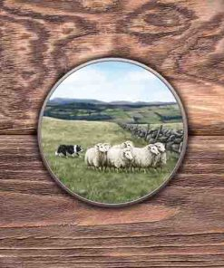 Highland Collection - Round Tin (Sheep & Sheepdog) Personalised Gift
