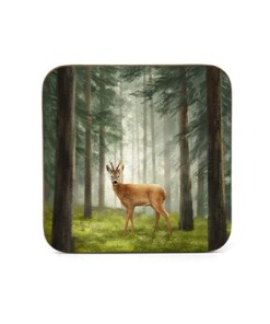 Highland Collection - Square Coaster (Roe Buck) Personalised Gift