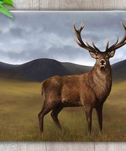 Highland Collection - Worktop Saver (Stag) Personalised Gift