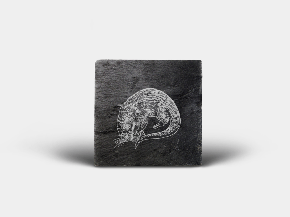 Country Images Scotland Custom Personalised Slate Coasters Highland Collection Engraved Scottish UK Otter Otters Nature Wildlife Animals