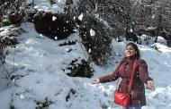 हिमाचल में बदला मौसम का मिजाज भरमौर की चोटी पर हल्का हिमपात, ठंड बढ़ी