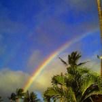 Aloha! The Bonus Familymoon