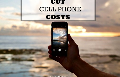 Cut Cell Phone Costs with Ting Mobile – No Kidding