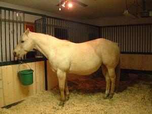 CMI Horse Stalls and Equipment Customer photo gallery and customer reviews of horse stalls atv