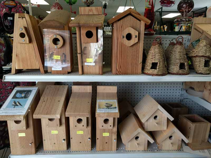 Bird Houses for Small Song Birds