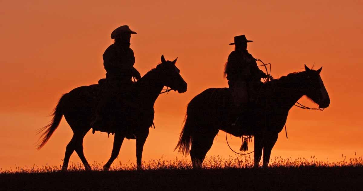 """Willie Nelson and his Rendition of """"Cowboys are Secretly Fond of Each Other"""" 1"""