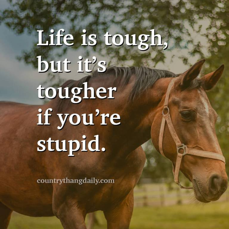 John Wayne Quotes - Life is tough but it's tougher if you're stupid