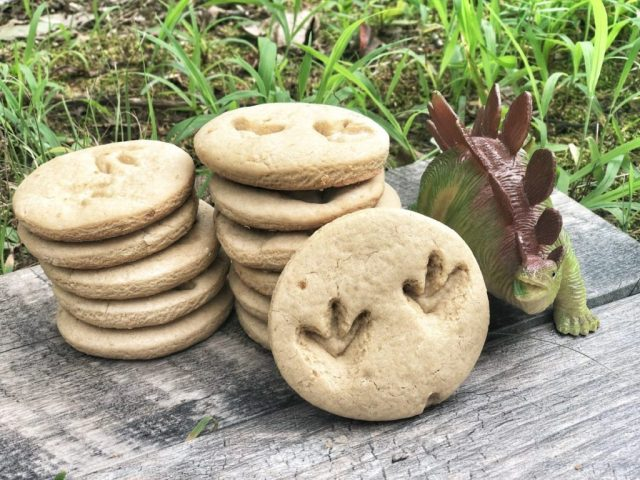 peanut butter fossil cookies