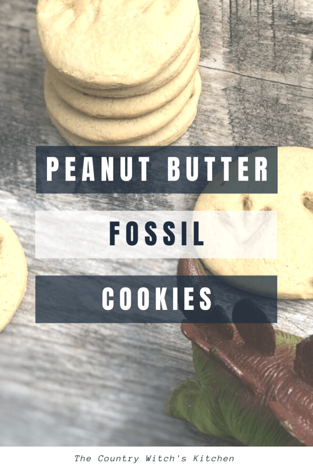 These simple peanut butter cookies are a fun snack for dinosaur lovers of any age. #fossilcookie #dinosaurcookie #peanutbuttercookie
