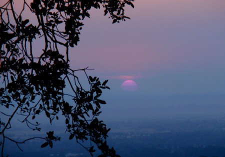 red sunset over fogbank-Sonoma County