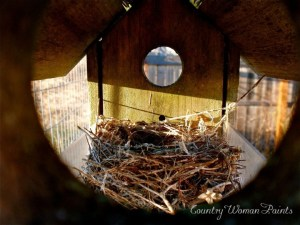 bird nest-countrywomanpaints.com