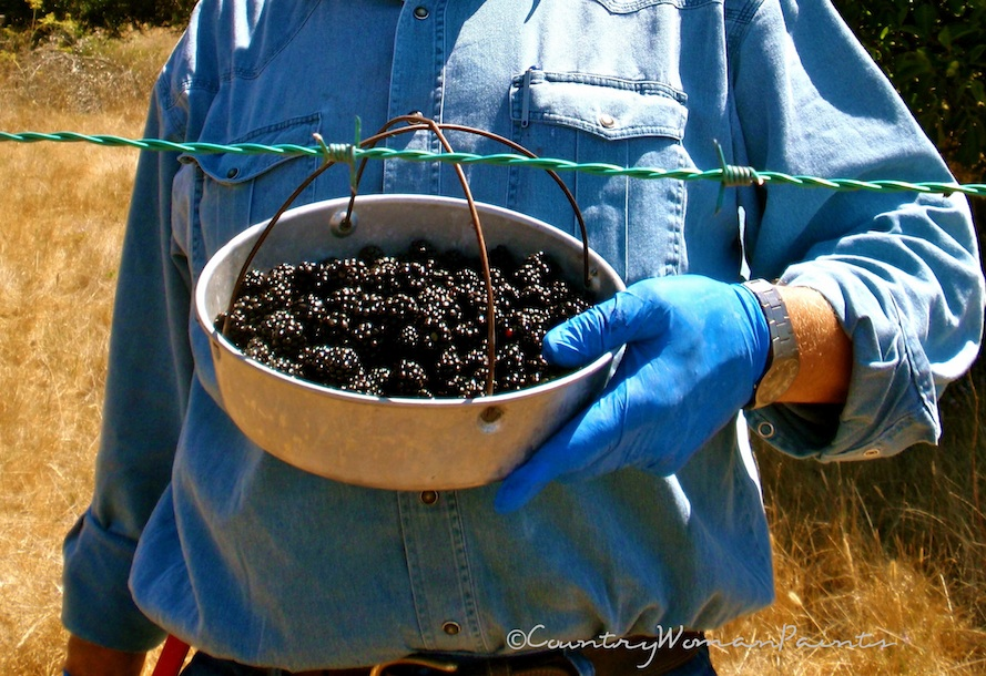 Blackberries + The Farmer