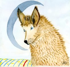 Lonely Coyote, A Blue Moon
