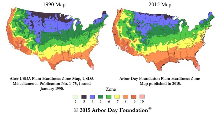 This image shows maps of USDA hardiness zones in 1990 and 2015.