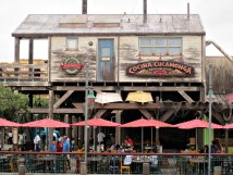 Disneyland California Adventure Restaurants