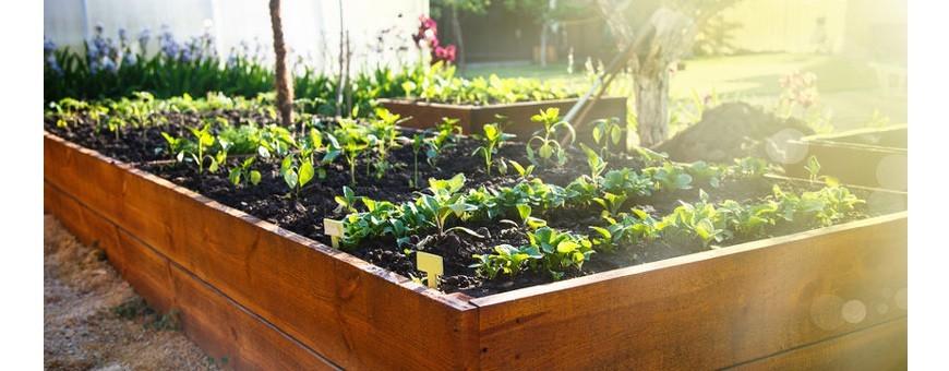 carre potager cour et jardin