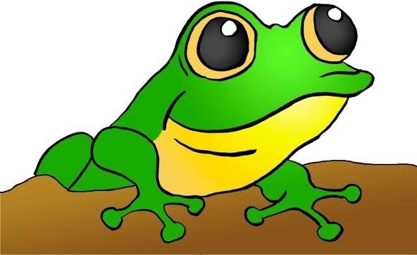 Frog Acronym