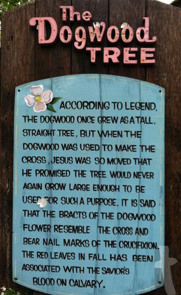 graphic regarding Legend of the Dogwood Tree Printable named The Dogwood Tree