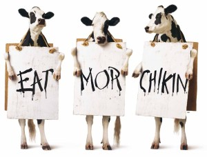 Eat Mor Chickin - Chick-fil-A cows