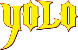 YOLO acronym
