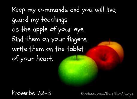 Proverbs 7:2-3