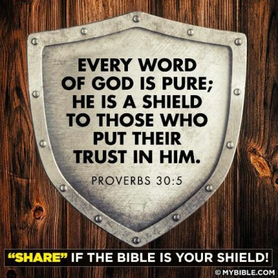 """Every word of God is pure; He is a shield to those who put their trust in Him."" Proverbs 30:5-6"
