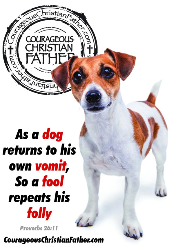 As a dog returns to his own vomit, So a fool repeats his folly. Proverbs 26:11