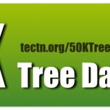 50K Tree Day logo