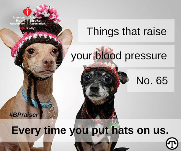 Things that raise your blood pressure. No. 65 Every time you put hats on us.