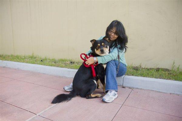 Woman with a dog. No-Kill Movement