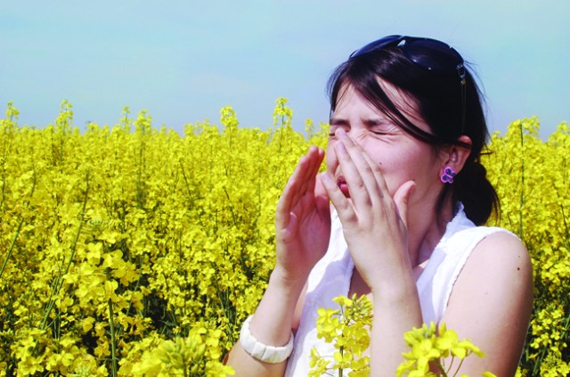 Pollen, mold, dust, and animal dander are some of the more common triggers of allergic rhinitis, known as Seasonal Allergies.