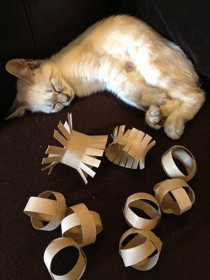 Cat-Toilet-Paper-Ring2