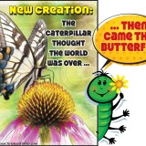 New Creation: The caterpillar thought the world was over ... Then came the butterfly