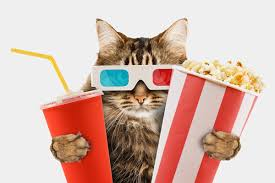 Famous Cats in Movies