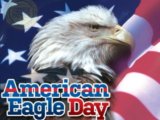 American Eagle Day - Bald Eagle Day - National Eagle Day