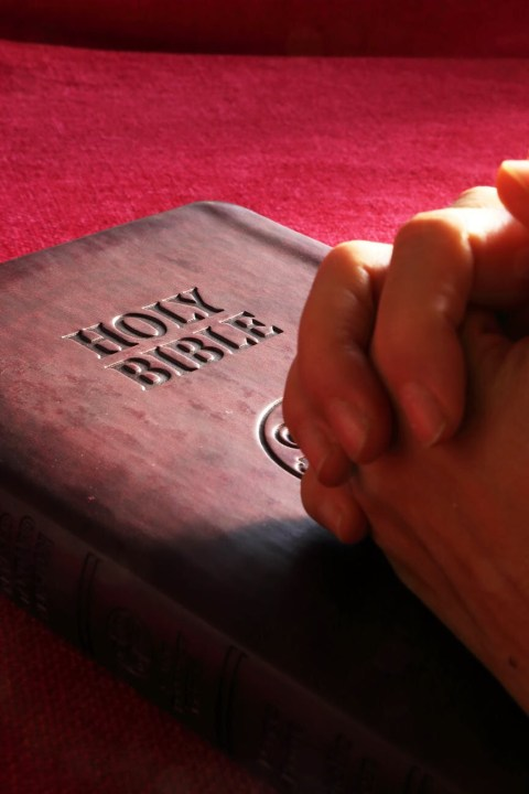 America's Appetite for the Bible Grows