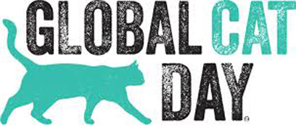 global-cat-day-8806205