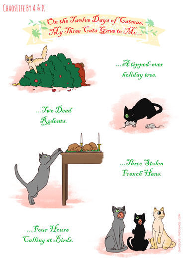 2015-12-23-12-days-of-catmas-part-1-7988781
