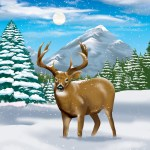 Reindeer and caribou are similar, but not the same - Reindeer are symbols of the holiday season. Legend states these antlered animals have a busy evening come December 24 - helping Santa Claus pull a sleigh weighed down by toys for the world's children. Why does Santa choose reindeer when caribou may be equally qualified for the job? It may be due to their greater history of domestication.