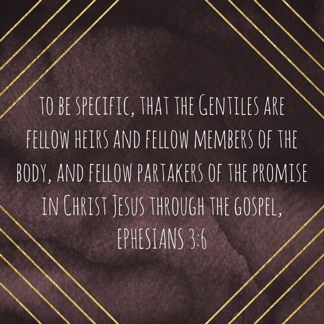 """VOTD June 9, 2019 """"to be specific, that the Gentiles are fellow heirs and fellow members of the body, and fellow partakers of the promise in Christ Jesus through the gospel,"""" EPHESIANS 3:6 NASB"""